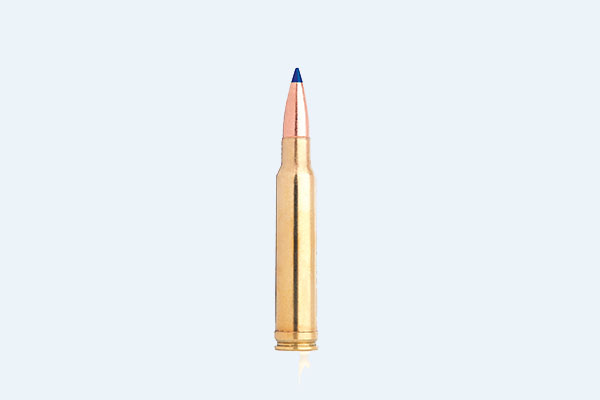 .338 Winchester Magnum: The Ultimate Big-Game Caliber