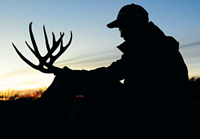 Top10Whitetail