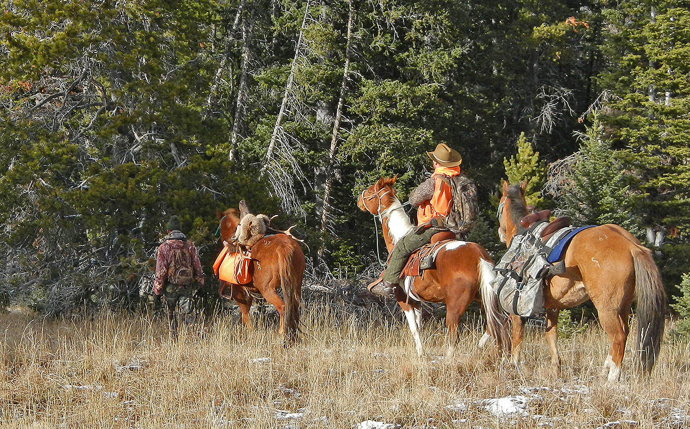 central-montana-outfitter-pack-in-elk-hunting