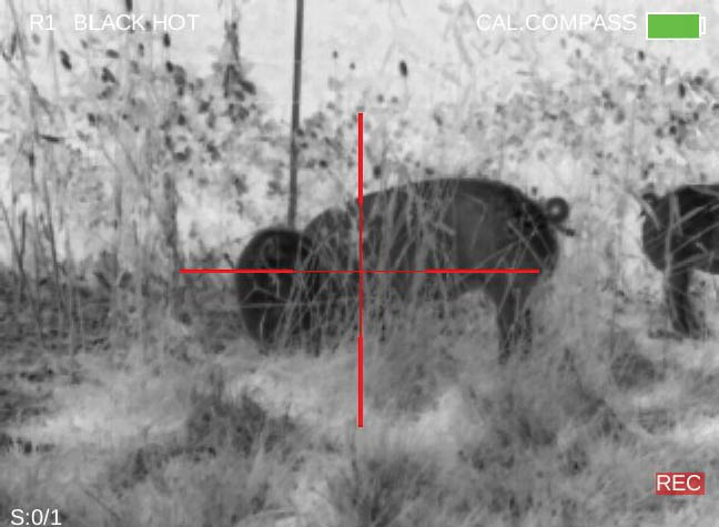 FLIR-Thermosight-Thermal-Hog