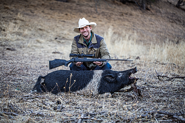 California hog