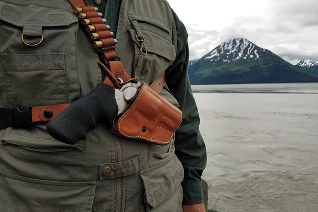Holstered gun in bear country