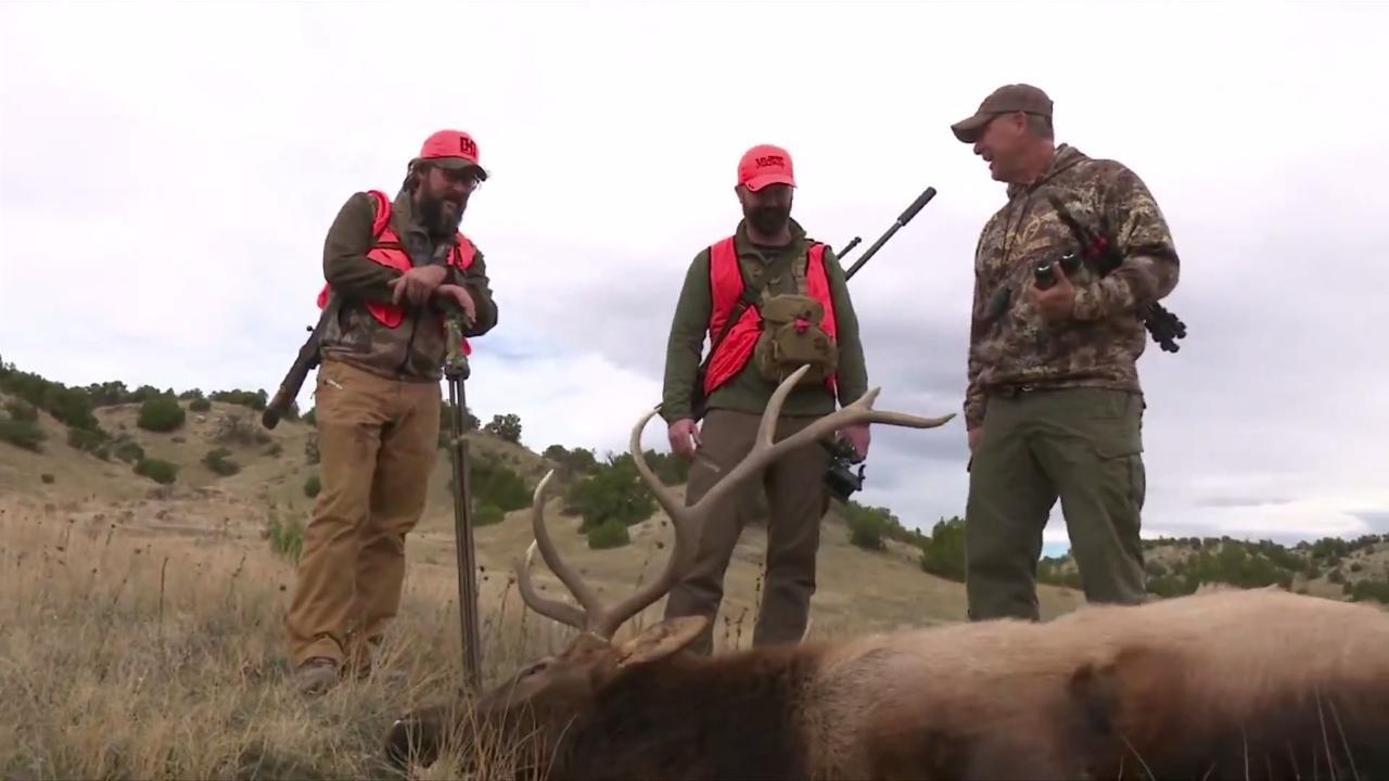 Southern Colorado Elk Hunt