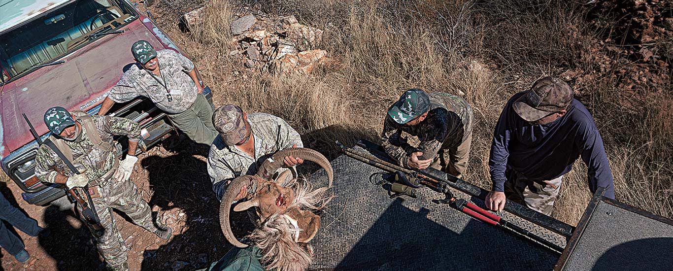 Adventures in Aoudad Hunting