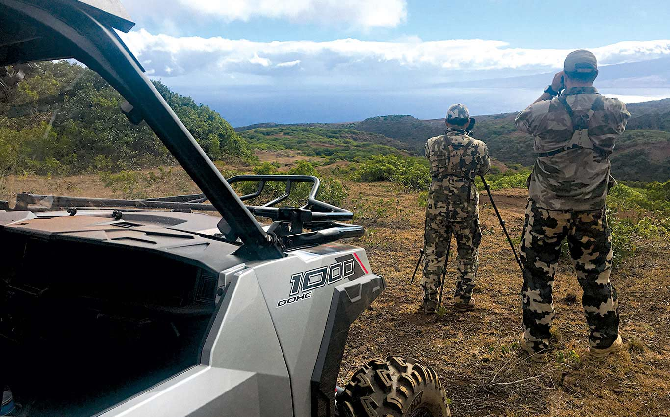 Hawaii: A Treasure Island for Deer Hunters