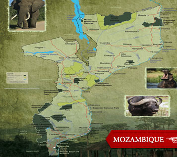 //www.petersenshunting.com/files/4-great-african-safaris/mozambique.jpg