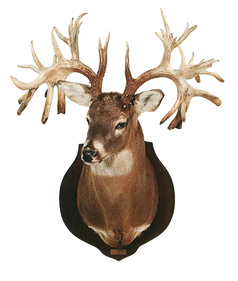 //www.petersenshunting.com/files/biggest-non-typical-whitetails-of-all-time/01_missouri_county.jpg
