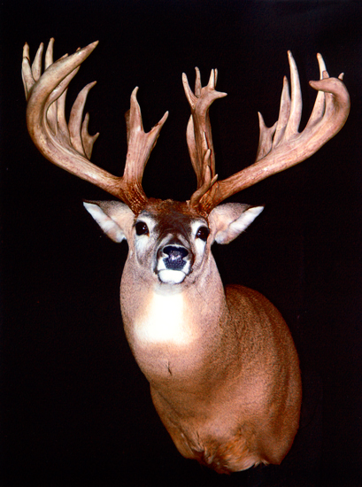 //www.petersenshunting.com/files/biggest-non-typical-whitetails-of-all-time/05_jerry_bryant.jpg