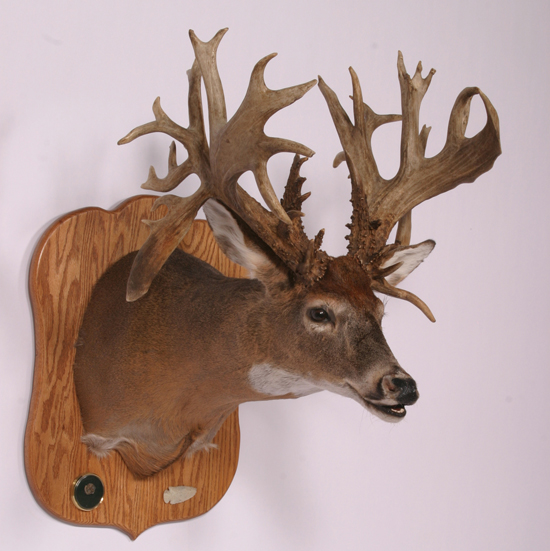 //www.petersenshunting.com/files/biggest-non-typical-whitetails-of-all-time/07_scott_dexter.jpg