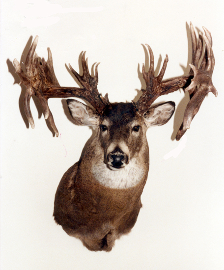 //www.petersenshunting.com/files/biggest-non-typical-whitetails-of-all-time/17_doug_klinger.jpg