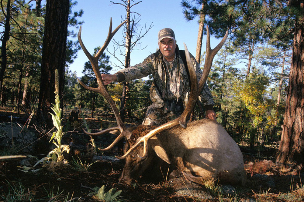 //www.petersenshunting.com/files/huntings-top-elk-states-for-2014/diy_elk_colorado.jpg