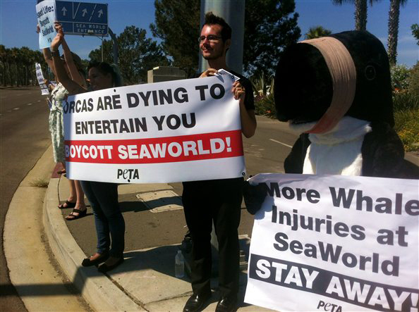 //www.petersenshunting.com/files/stupid-peta-campaigns/1seaworld.jpg
