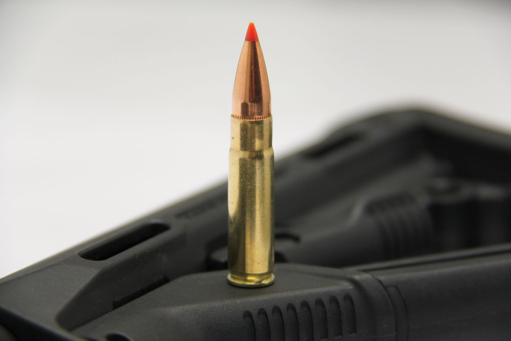 //www.petersenshunting.com/files/whats-the-perfect-hog-cartridge/300blk.png