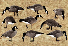 By Jay Strangis    Webfoot L.S.P., makers of Real Geese, has introduced the new Pro
