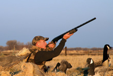 There are geese From the Dakotas to the Rockies...and plenty of places to hunt them.