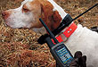 By Jerry Thoms    The Garmin Astro is a global positioning transmitter on a dog
