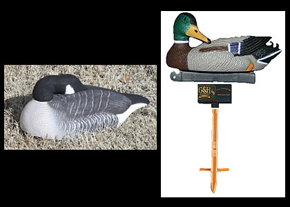 The newly developed standard one-piece Canada Goose Shell decoy features...