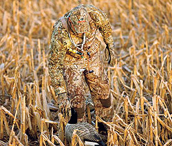 By Patrick Meitin    The launch of Duck Blind ushered in a new era of camouflage