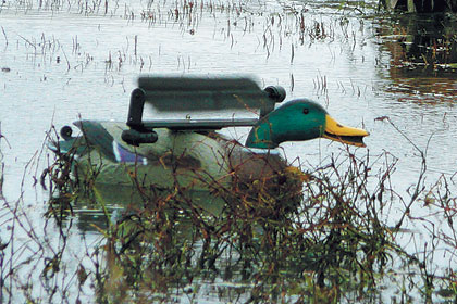 By Jennifer L.S. Pearsall    Most motion decoys have a combination of batting,