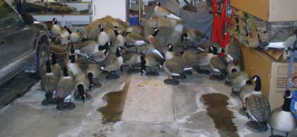 Rung S Overhead Full Body Goose Storage System