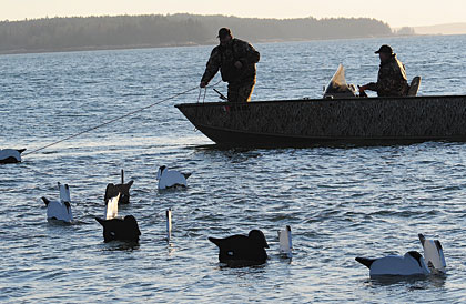 Pro Tips For Using V-Board Decoys