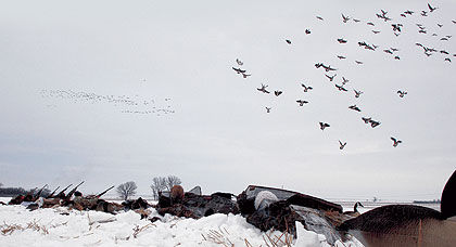 20 inches of snow threatened to wipe out a cross-country waterfowl hunt