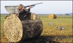 Choices in field blinds allow easy setup in impossible places