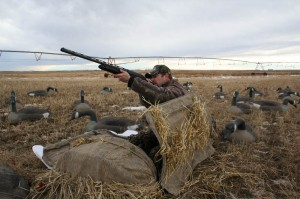 Hunting with decoys