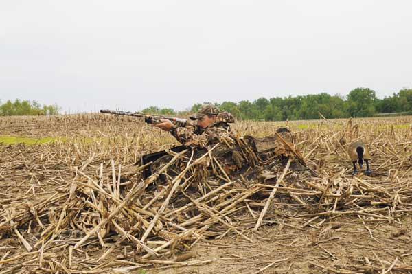 New Duck Blinds and Layouts for 2013