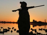 best waterfowl shotguns