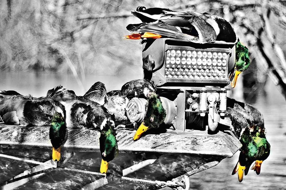 Hot New Waterfowl Accessories for 2014