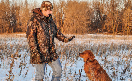 Most duck dogs are never further away from serious training than the day the waterfowl season ends.