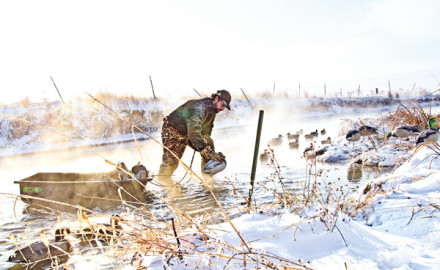 Tips for Hunting Mallards During Winter