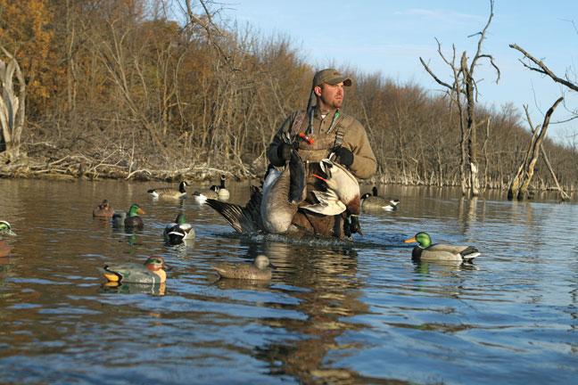 Tips on decoying ducks
