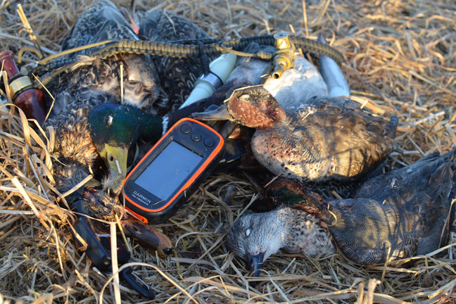 Using GPS Collars for Scouting