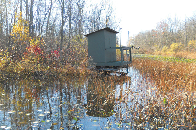 Building a Roll-Out Duck Blind