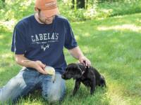 Dog Training with Decoys