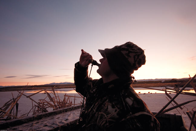 Calling Ducks: Tips to Remember While in the Blind