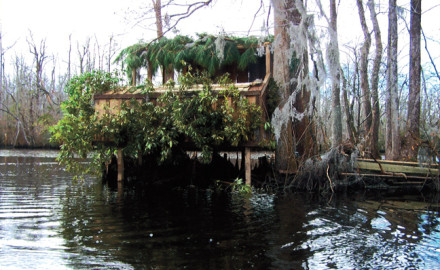 BB&T Duck Blind Build