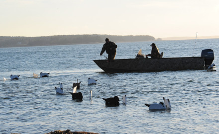 Using V-boards for Duck Hunting