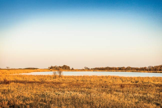 public-lands-for-waterfowl-access