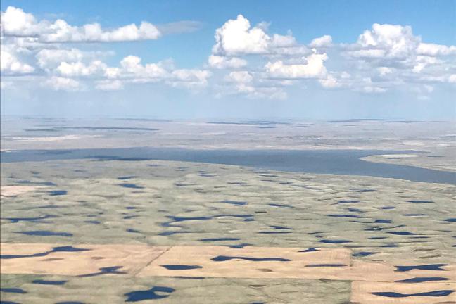 Good-Habitat-Conditions-in-Southern-Alberta