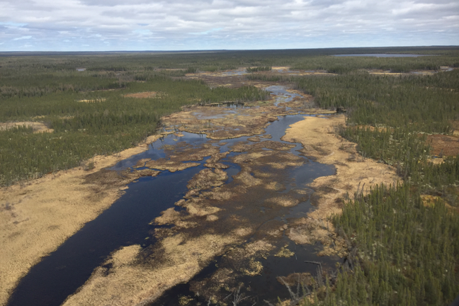 Saskatchewan-Manitoba-Border-Wetlands