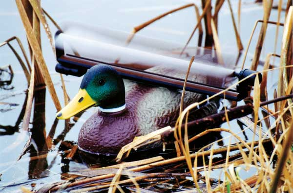 //www.wildfowlmag.com/files/best-duck-decoys-for-2013/25_realduck_action.jpg