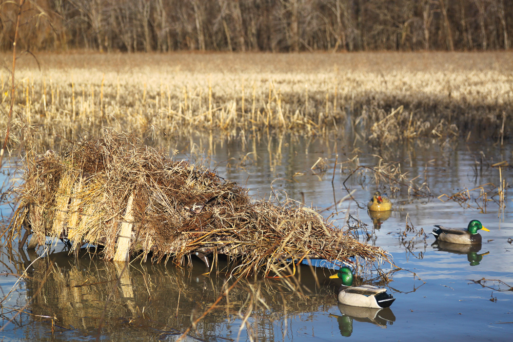 Best New Waterfowl Blinds and Layouts for 2015