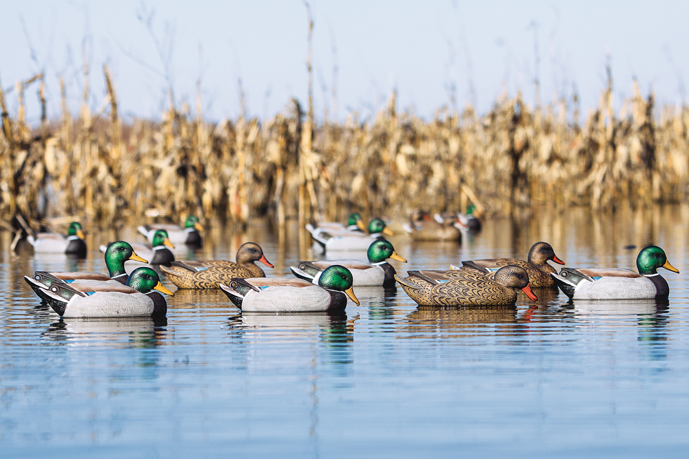 //www.wildfowlmag.com/files/best-new-waterfowl-decoys-for-2015/banded_floatingmallards.jpg