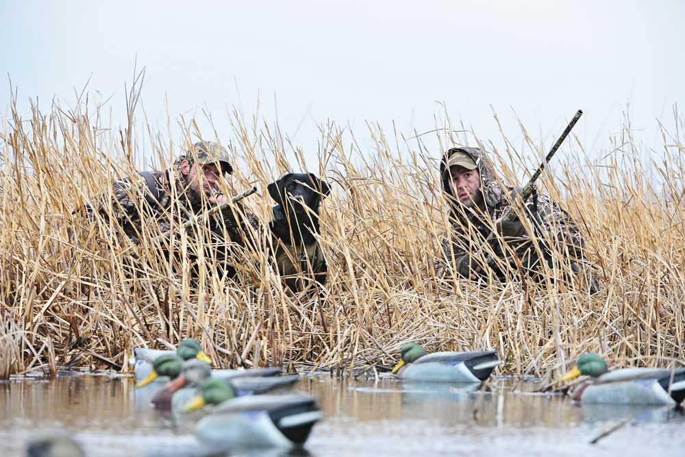 //www.wildfowlmag.com/files/hot-new-duck-and-goose-calls-for-2014/goey.jpg