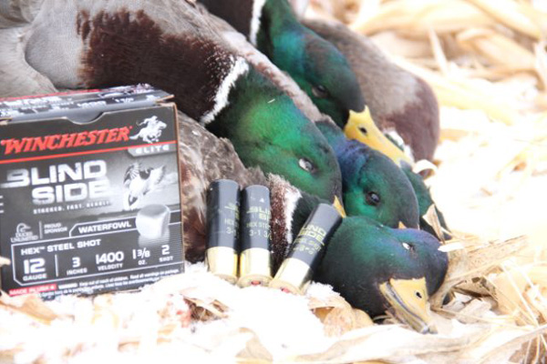 //www.wildfowlmag.com/files/ten-great-places-to-hunt-ducks/wildfowl_dest_montana.jpg
