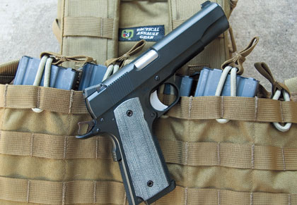The Guns of Dan Wesson