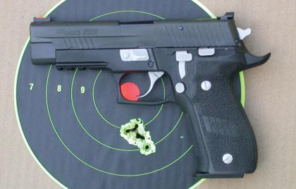 Hornady .45 Colt LeverEvolution